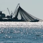 Tunisia promotes sustainable fisheries with deployment of satellite monitoring system