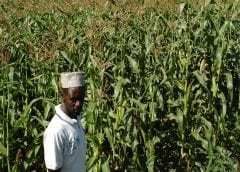 Tanzania, IFAD launch US$77.4m project to boost productivity, build resilience of small-scale farmers
