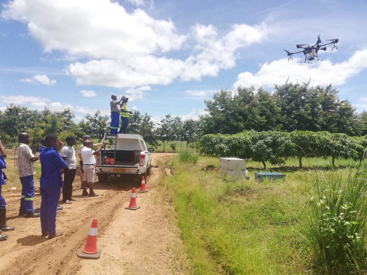 Drone spray demo Malawi Mangoes Operations Limited