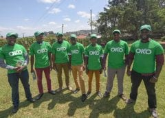 Insurtech start-up OKO raises US$1.2m to bring innovative products to smallholder farmers in Africa